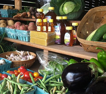 The Farm Stand at Horn Farm Center