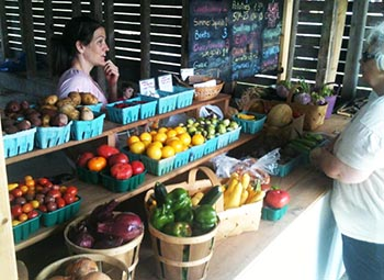 HFC Farm Stand.