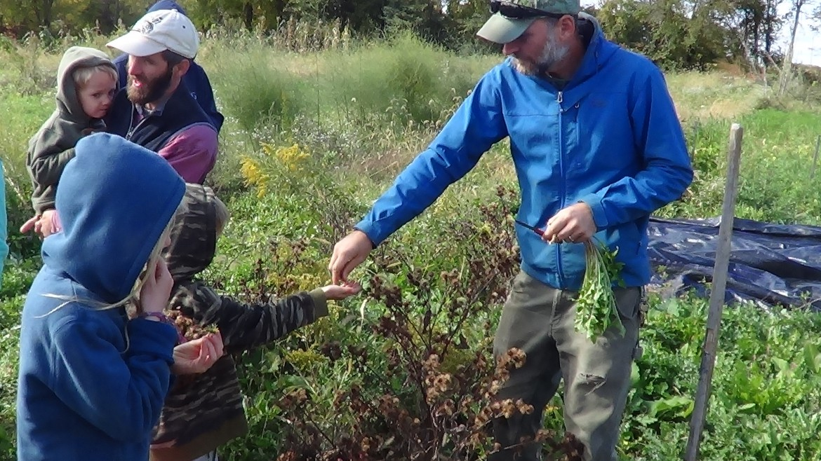 Foraging for Wild Edibles at the Horn Farm