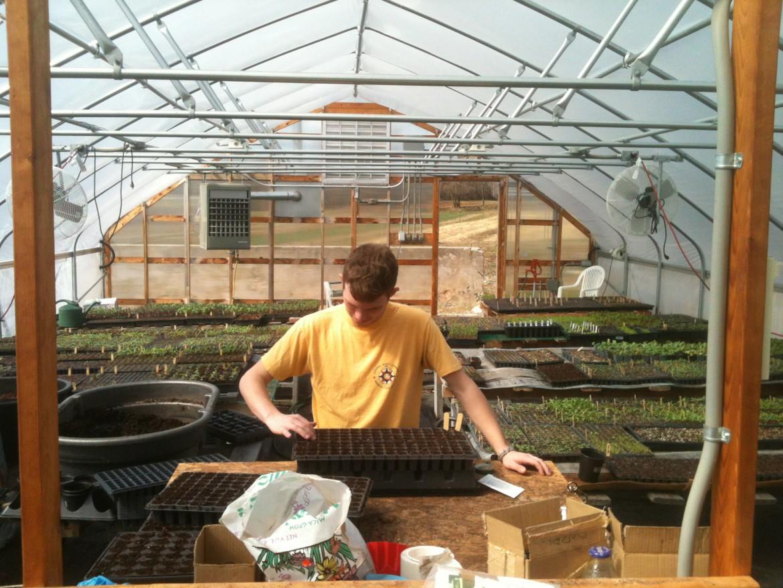intern at Horn Farm