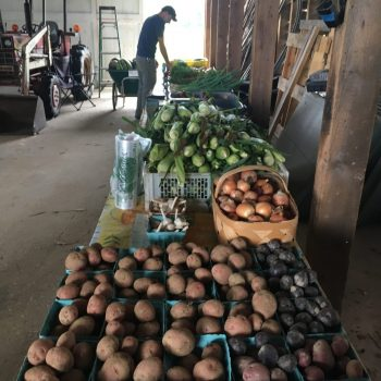 CSA pick up at the Horn Farm