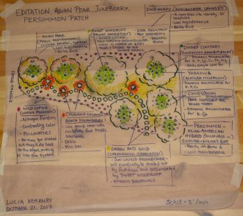 permaculture design drawing