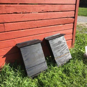Liam Skroly Bat Boxes