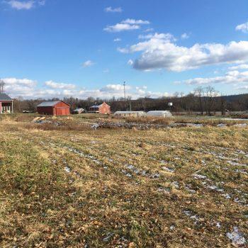 Horn Farm in December