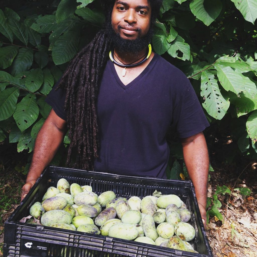 mike with pawpaws