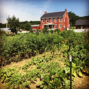 community gardens with farm house