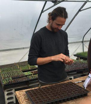 Andrew planting okra