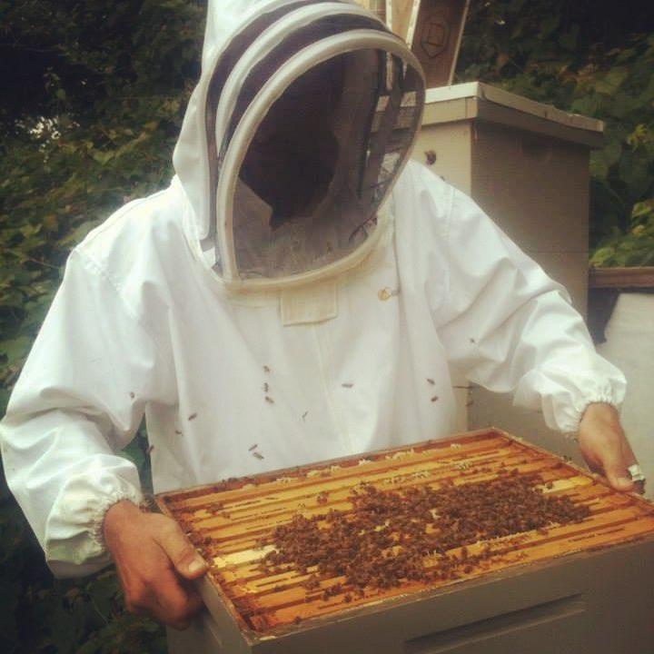 beekeeping-1