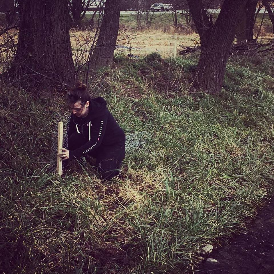 heather-planting-trees