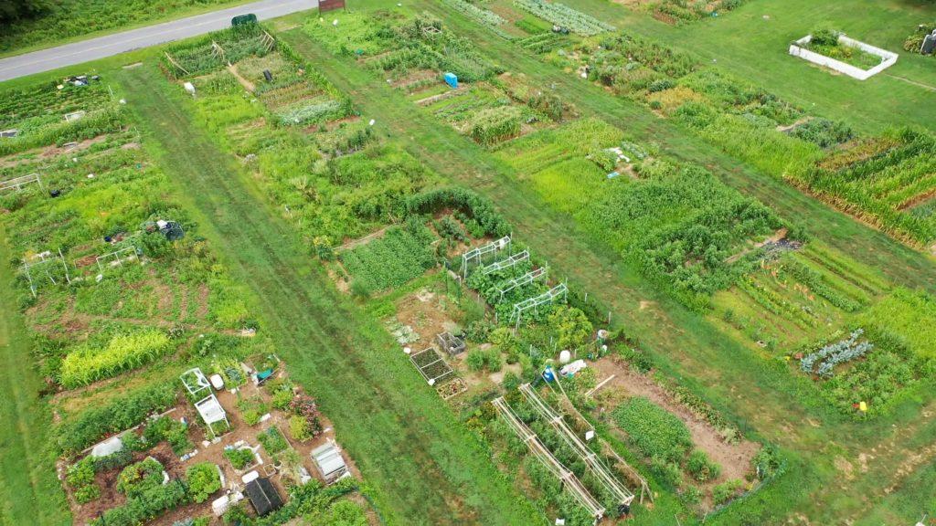 community-gardens 2019